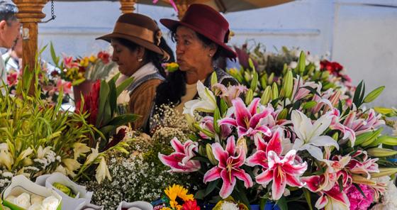 Lírio no mercado de flores em Cuenca, Equador