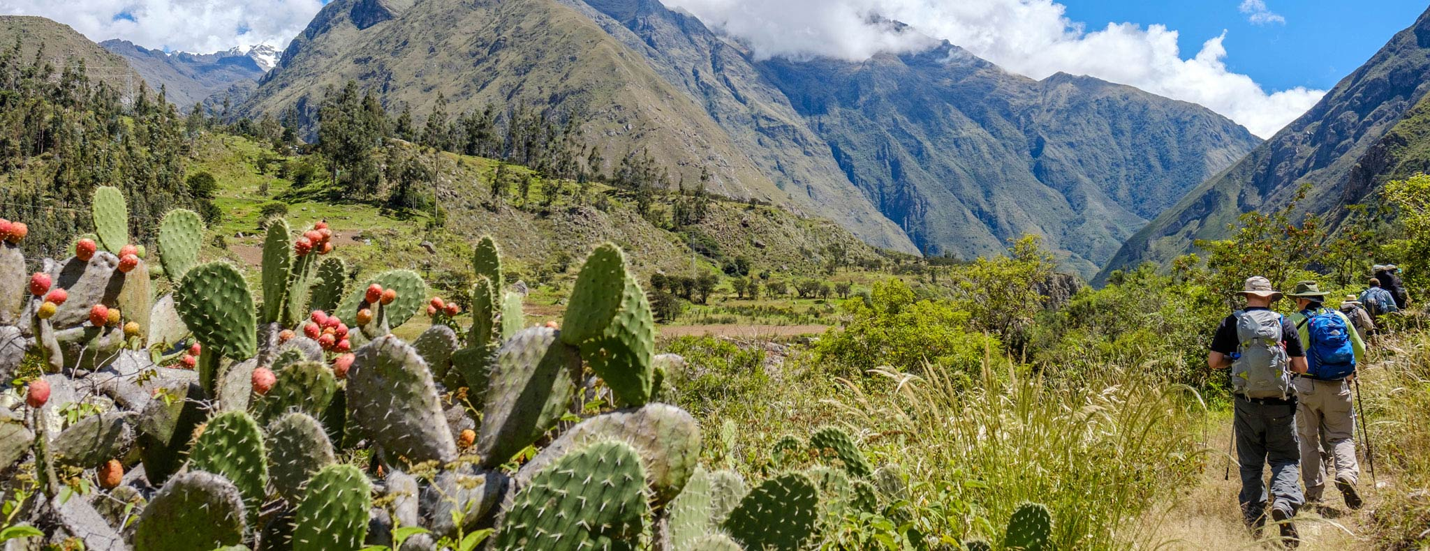 backpackers trekking Inca Trail in Alausí, Ecuador