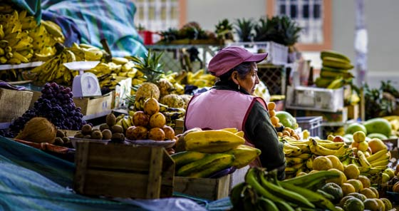Woman in pink cap selling fruits at la Merced market in Riobamba, Ecuador